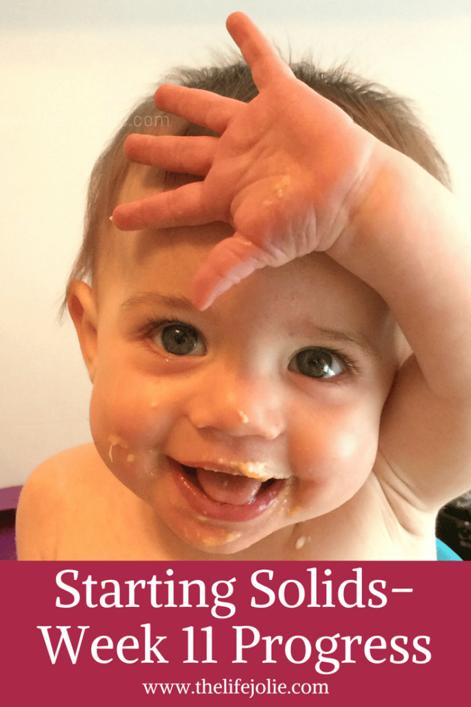 Starting Solids- Week 11 Progress | The Life Jolie
