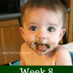 Starting Solids- Week 8 Progress