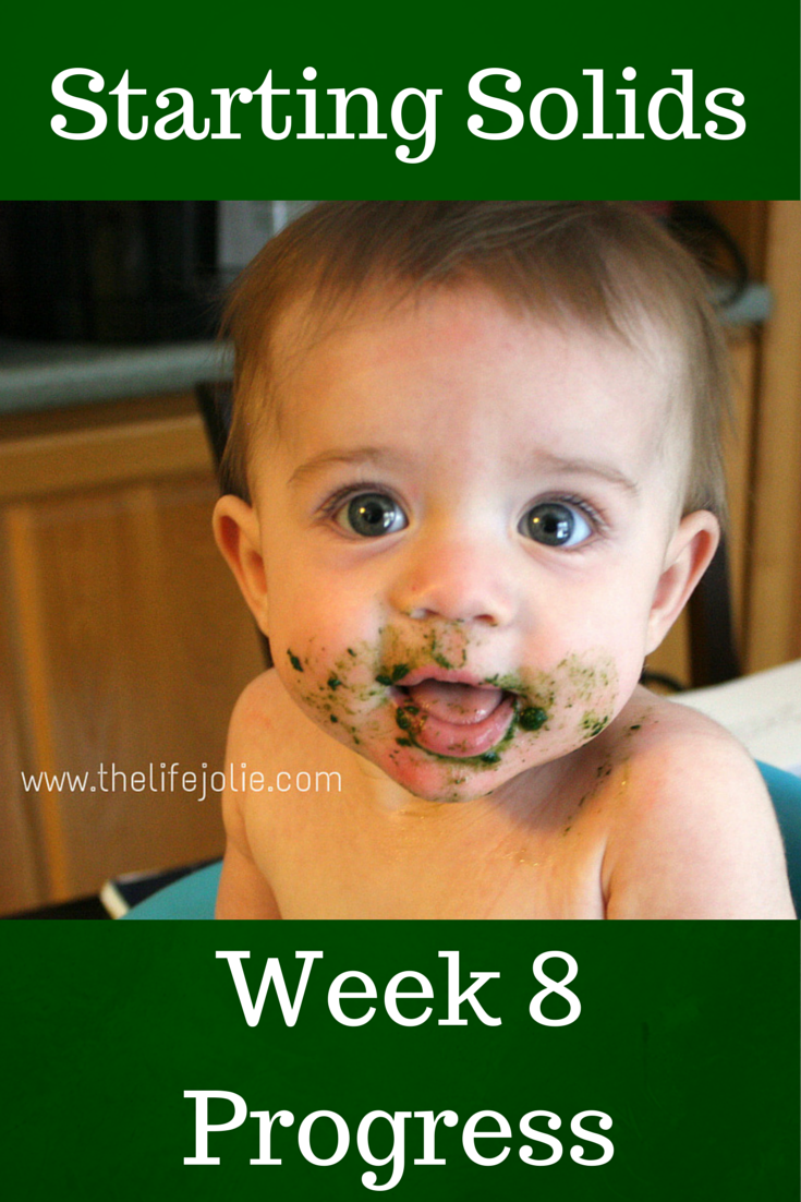 Starting Solids- Week 8 Progress | The Life Jolie