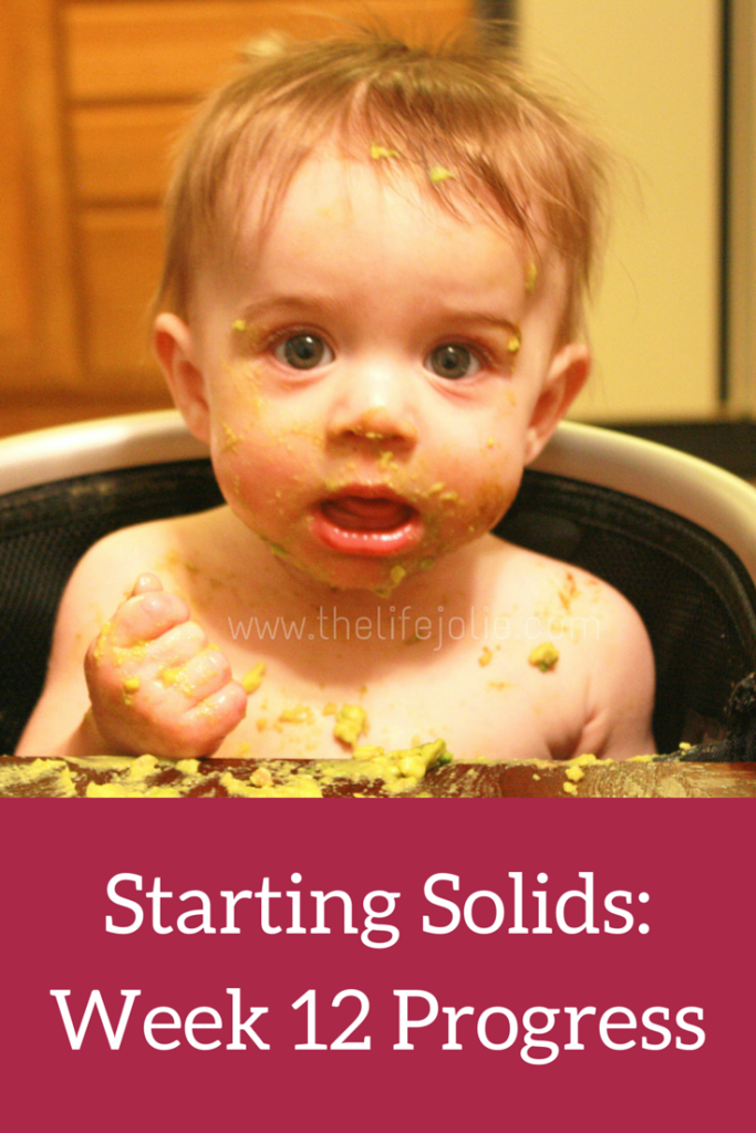 Starting Solids-Week 12 Progress | The Life Jolie