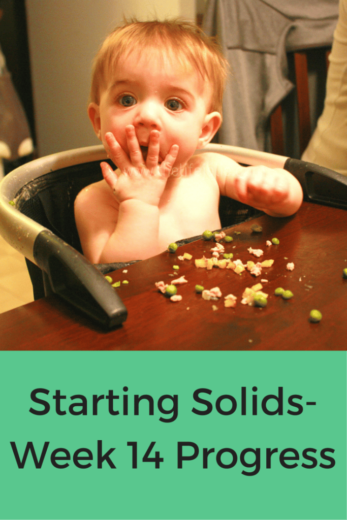 Starting Solids- Week 14 Progress | The Life Jolie