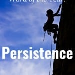 2016 Personal Word of the Year: Persistence