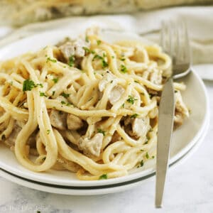 A square image that is a close up of a plate of turkey tetrazzini with a fork in it