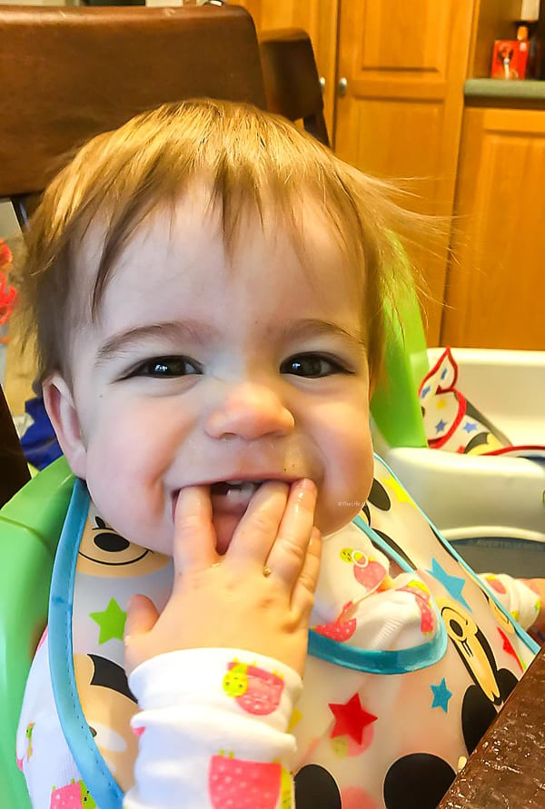 Tessa is 11 Months Old | The Life Jolie