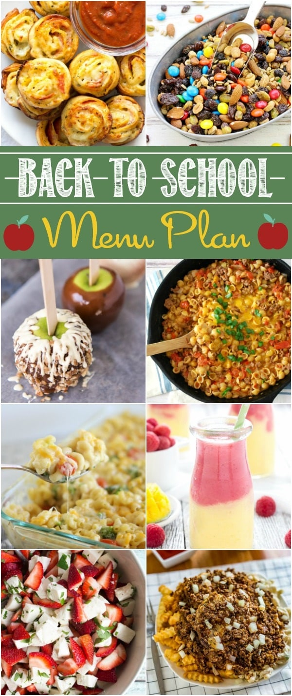 Check out this awesome Back to School Party Menu Plan full of fantastic recipes from your favorite bloggers!
