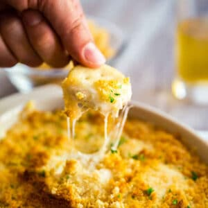 A square image of Chicken Swiss Dip.