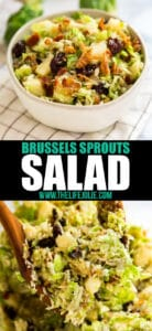 This Salad with Shredded Brussel Sprouts Recipe is the perfect fall side dish. Made with apples and dried cherries and topped with a warm bacon dressing, this is the best way to make even the most avid Brussels Sprouts hater to change their minds!