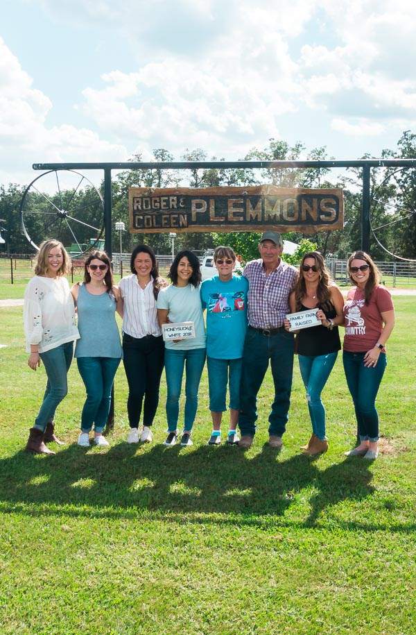 The Plemmons