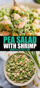 This Pea Salad with Shrimp recipe is a super easy side dish that's perfect for any gathering! It's served cold because it's creamy with sweet green peas (I totally used frozen!), shrimp, and cashews and water chestnuts which make it crunchy. Make this if you need a tasty and light Thanksgiving side dish!