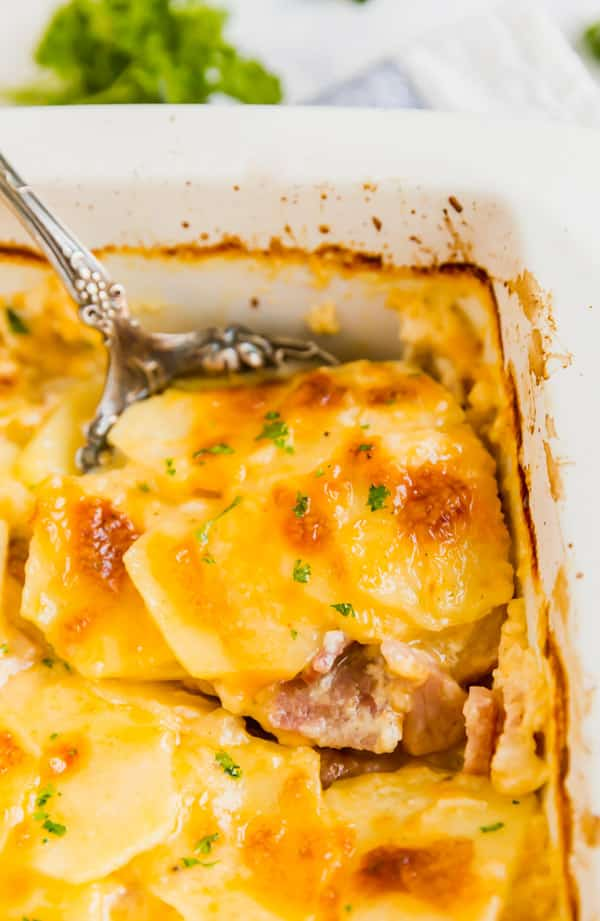 A spoon in a pan of scalloped potatoes and ham recipe