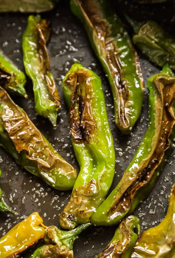 A close up of this blistered shishito peppers recipe