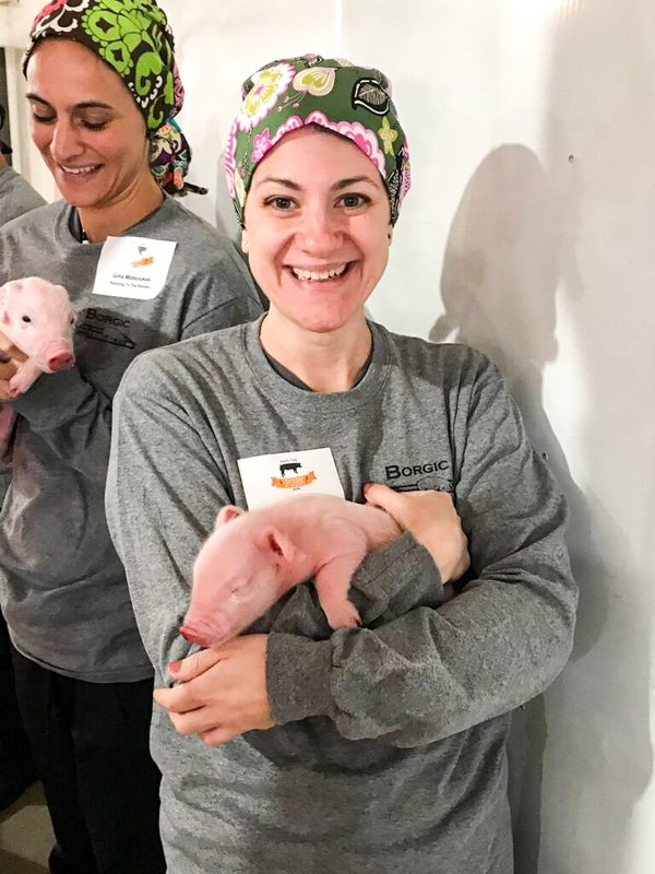 Me holidng a baby piglet
