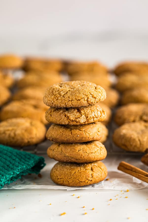 A single stack of molasses cookies