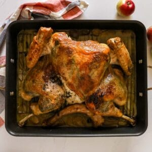 An overhead image of a roasted whole turkey butterflied and laid out in a roasting pan on a orange and grey towel with apples on the side of it.